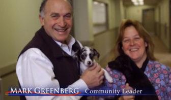 A Greenberg campaign ad showing his involvement with the dog and cat shelter he founded with his wife.