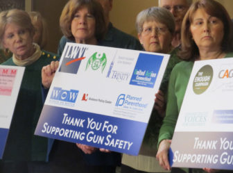 Gun-control groups say they will provide political cover for their allies this fall.
