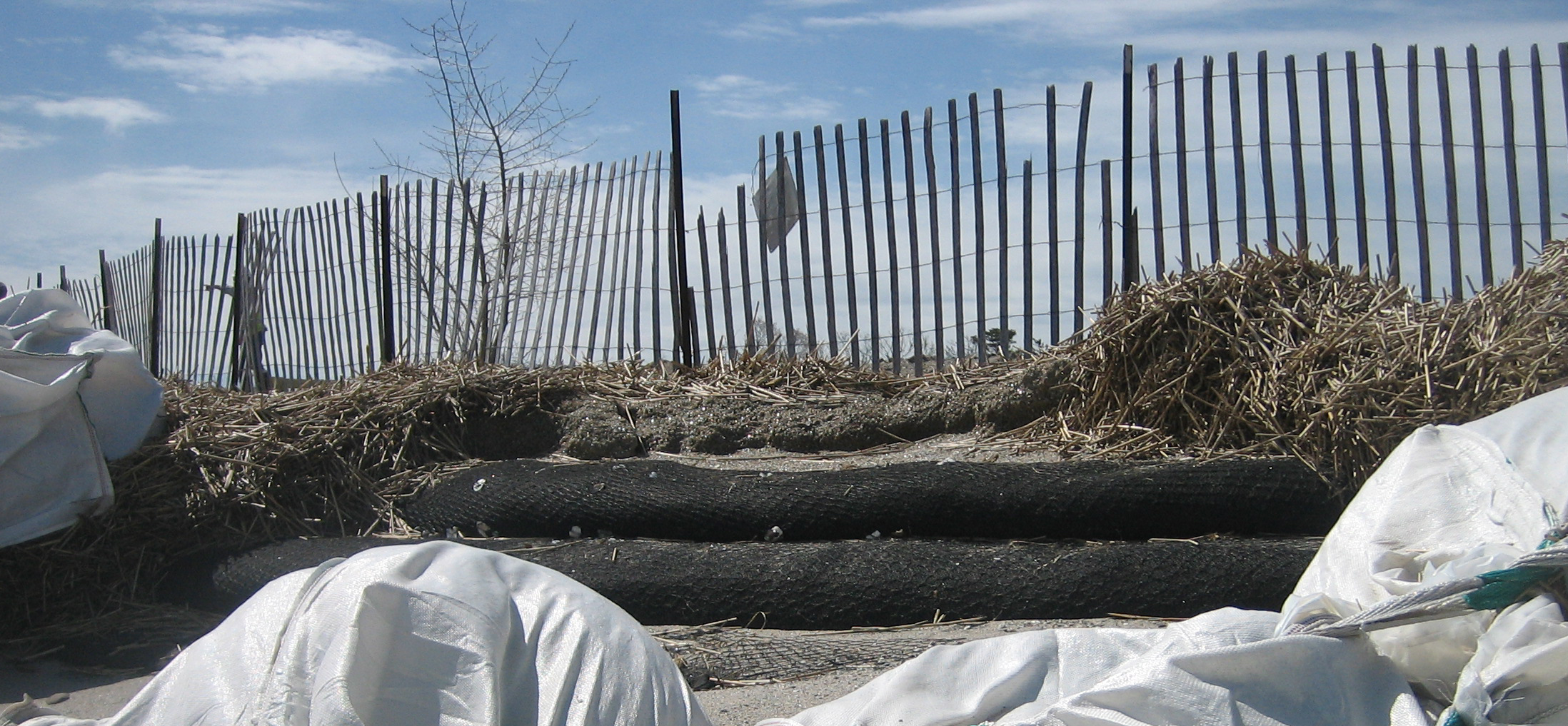 The two black tubes used to re-establish this dune are made of geotextiles.