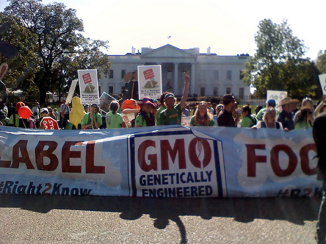 Most Americans want GMO foods labeled; big agribusiness doesn't