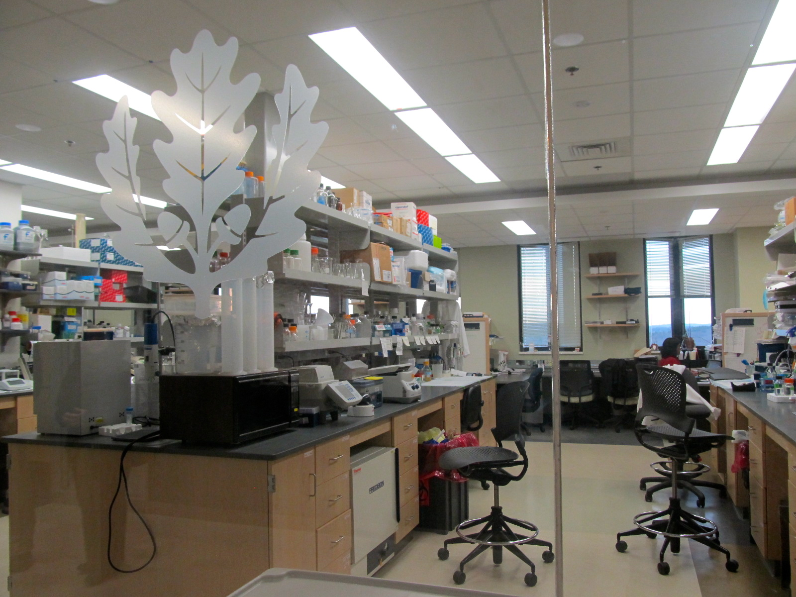 A new research lab at the UConn Health center in Farmington
