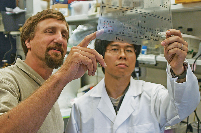 Professors Bruce Mayer, left, and Kazuya Machida in Mayer's lab
