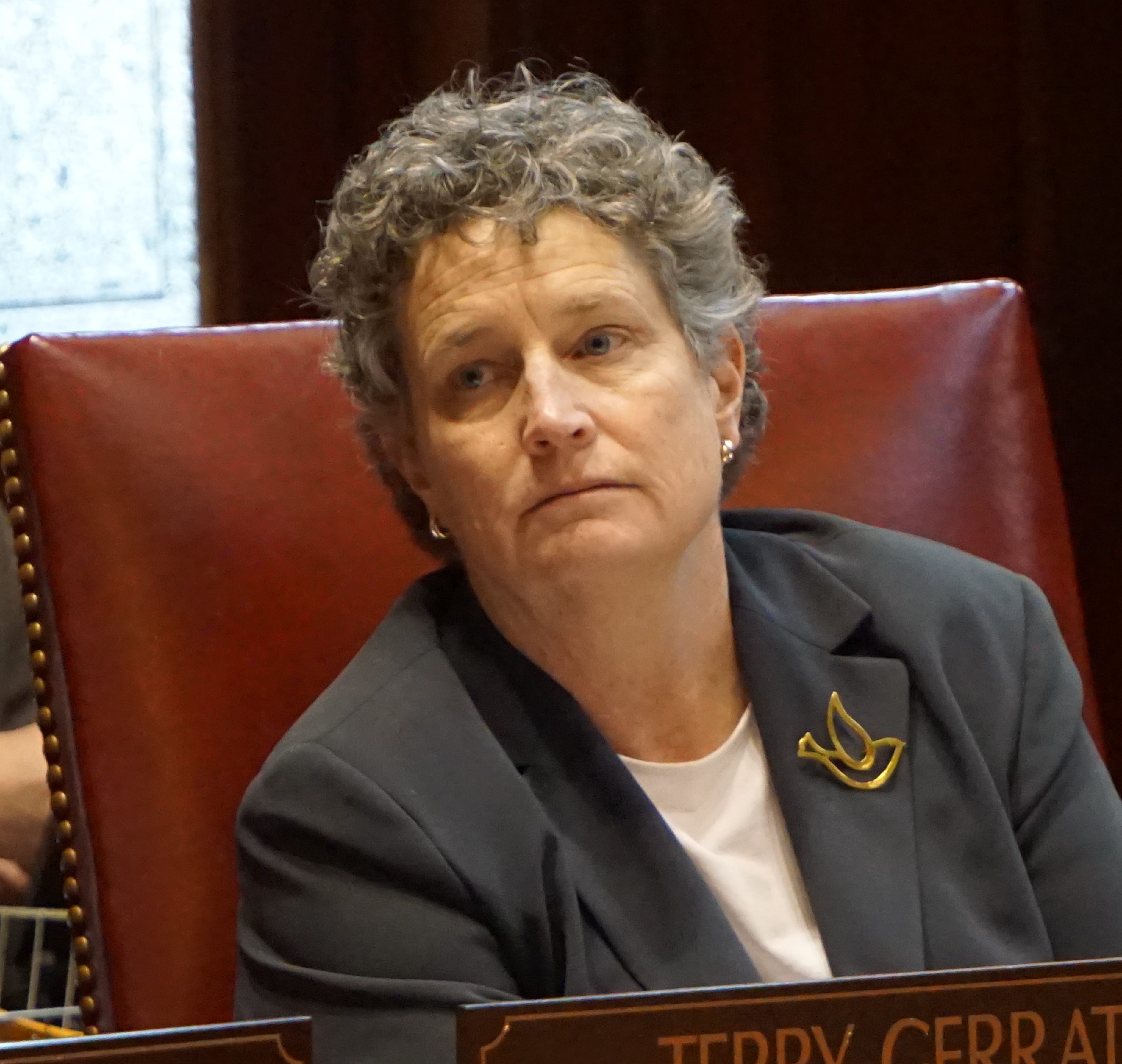 Sen. Beth Bye to step down as co-chair of Appropriations