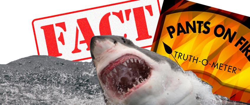 Campaign fact checking has 'jumped the shark'