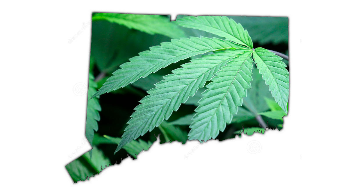 Lamont administration makes its push for pot