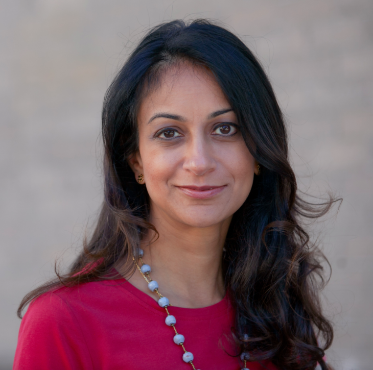 Bhargava pitches herself as pro-business, progressive Democrat