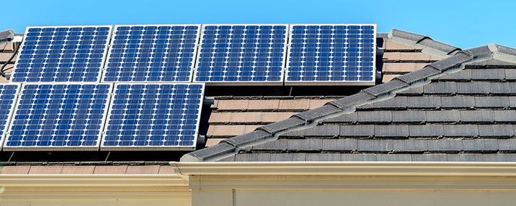 Support homegrown solar energy this session