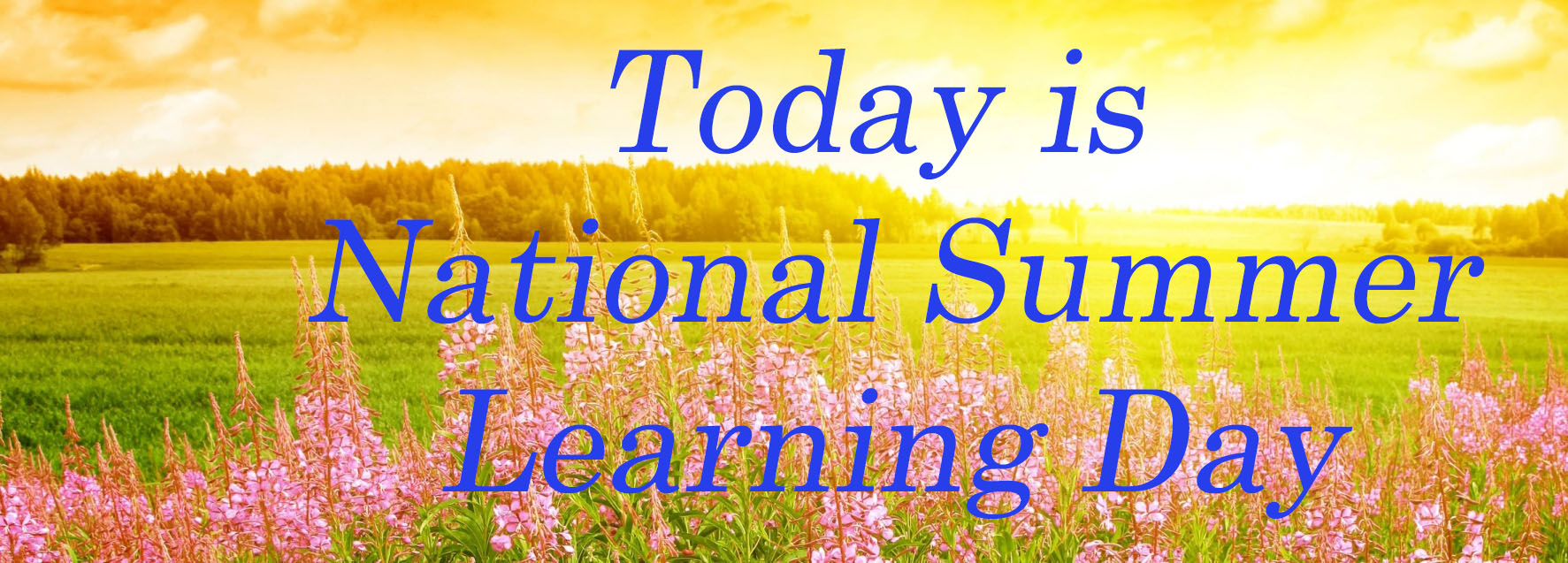 'Summer Learning Day' represents opportunities, gaps