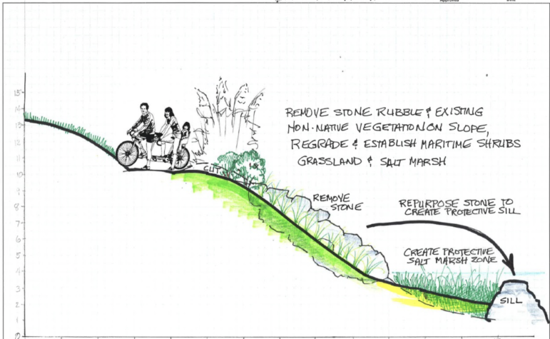 Schematics of living shorelines for East Shore Park