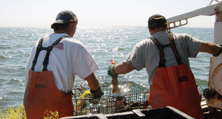 Lobstering is still done in Long Island Sound, though there are far fewer lobsters. Warming water due to climate change has shifted the lobster population about 200 miles north to the Gulf of Maine.