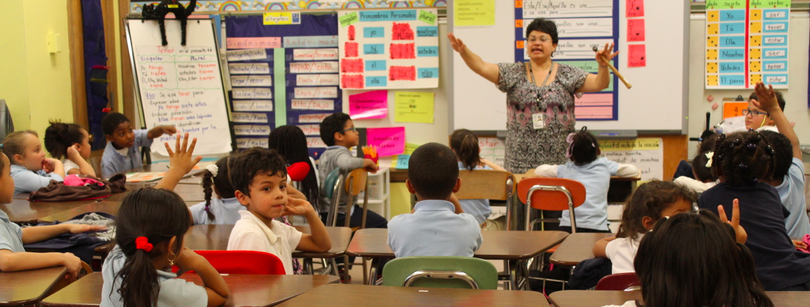 Calling on Democrats to lead on education in 2019