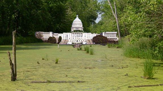 The lobbying swamp is flourishing in Trump's Washington