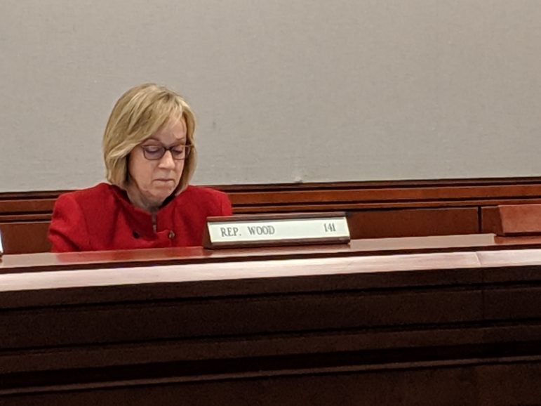 Rep. Terrie Wood R-Darien spoke out strongly in a favor of a bill that would enable legislators to stop a plan to merger the state's 12 community colleges.