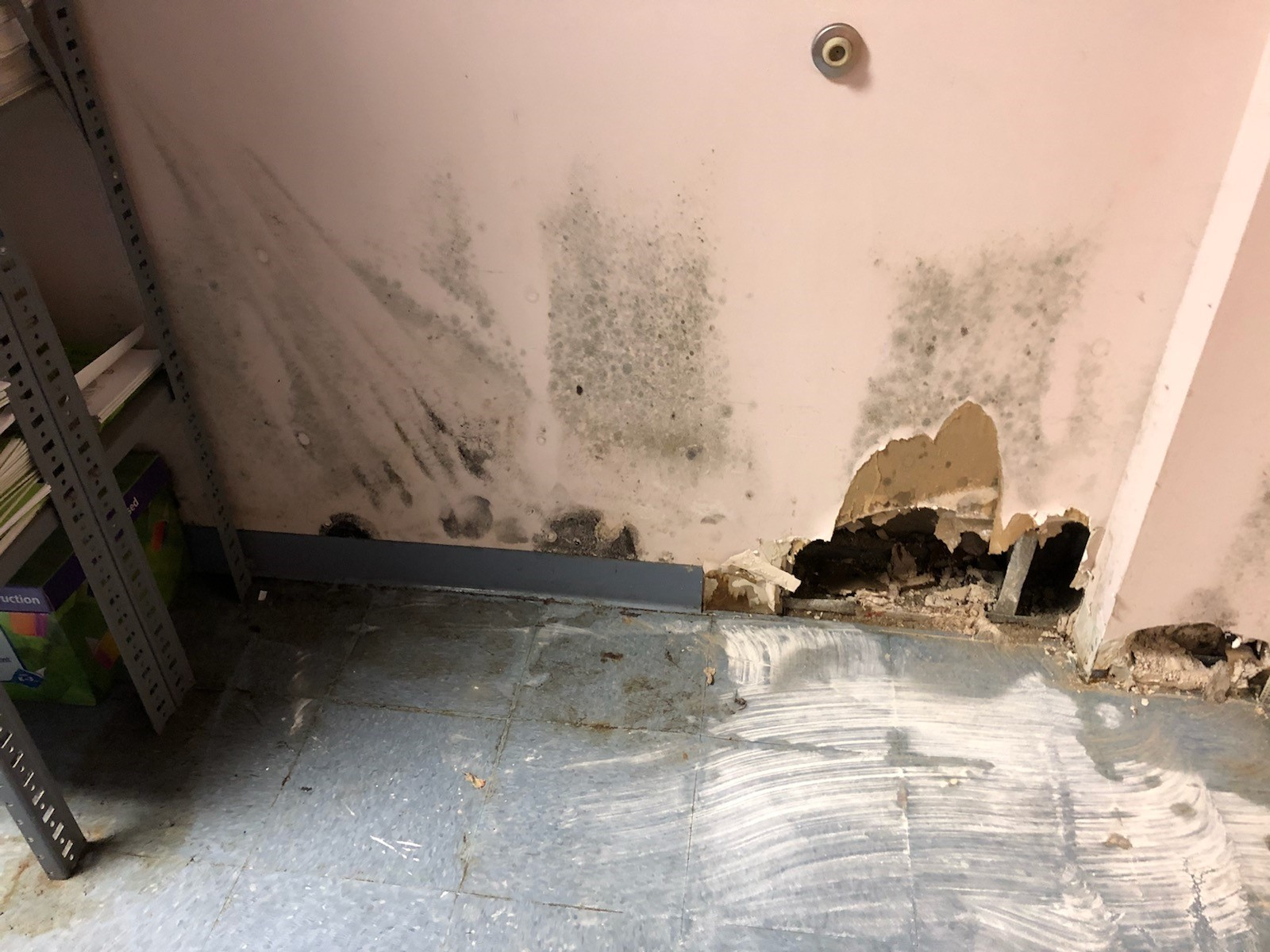 Teachers report mold, rodents, and excessive heat in schools are making them, their students sick