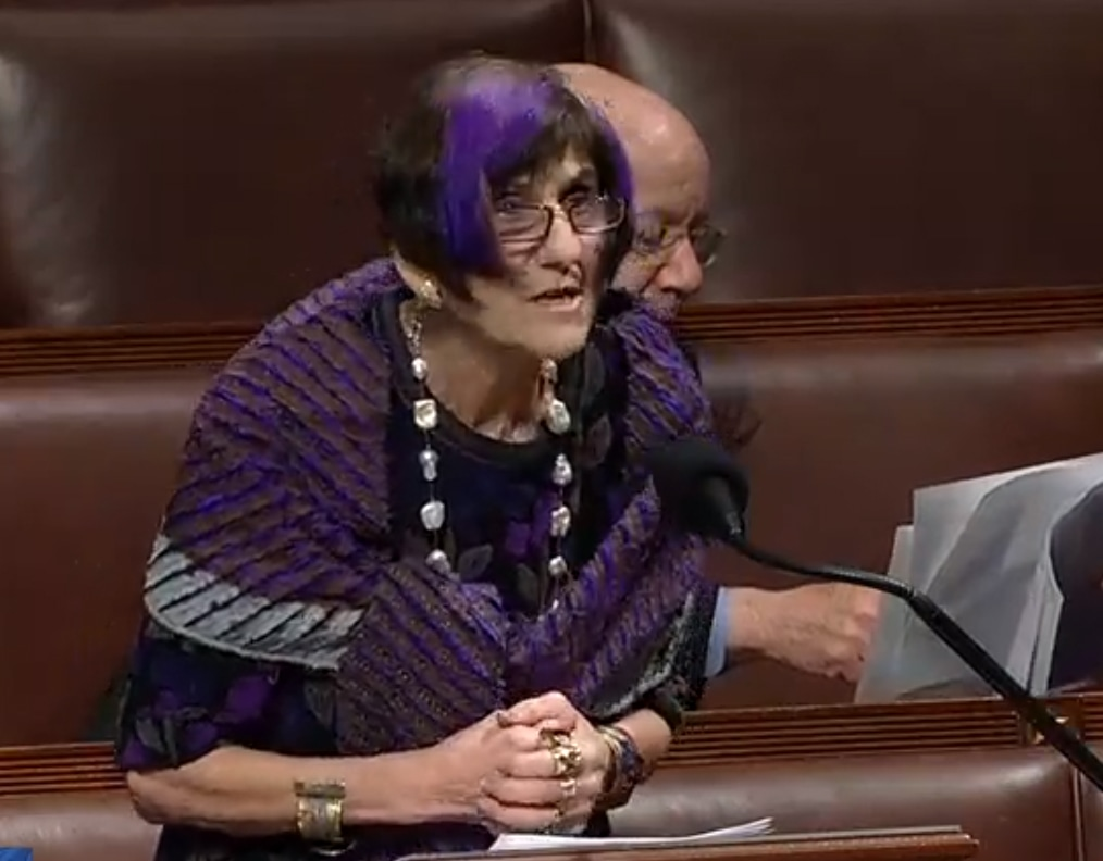 Rosa DeLauro on her new gig: 'It's every aspect of people's lives.'
