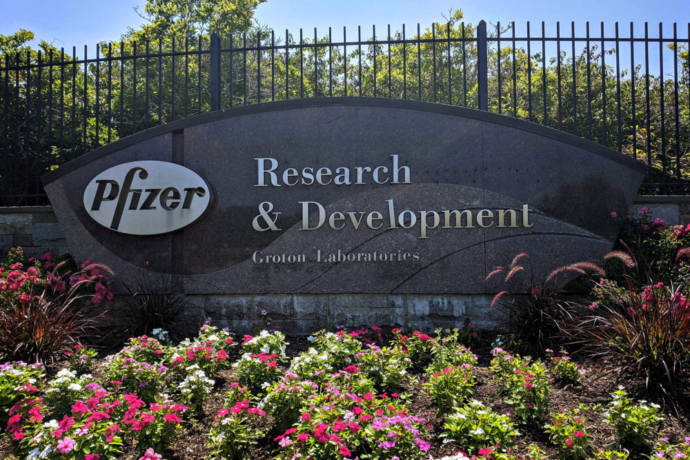Pfizer could have 50 million coronavirus vaccine doses manufactured by year's end