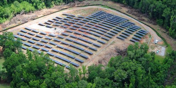 'No net loss!' Don't cut down forests to build solar sites