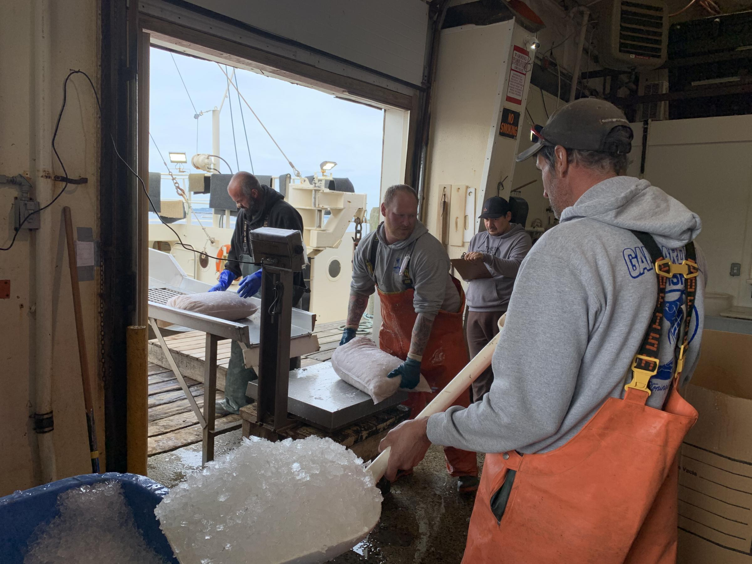 Fishing industry feels stranded as offshore wind gathers momentum